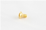 GS-3263-002 Gold Switch Mounting Screws