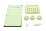 PG-0549-024 Mint Green Stratocaster® Plastic Parts Kit
